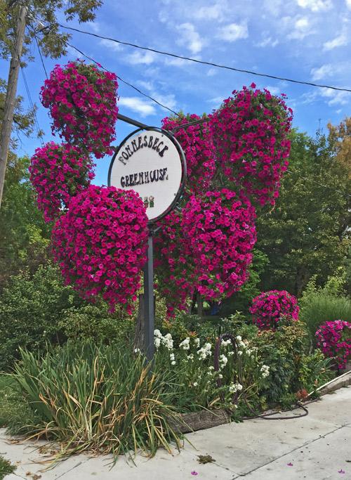 FONNESBECK's — Blooming since 1995. (Jordan Floyd photo)