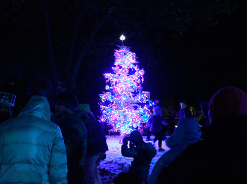 The Hyde Park Christmas tree lights up the season. (Mekenna Malan photo)